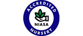 Accredited NIASA Nursery